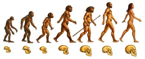 darwinizmus